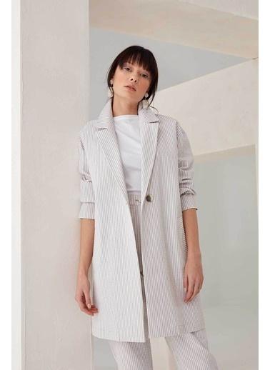 Vivencia Ince Çizgili Kadın Blazer Ceket Vizon Vizon